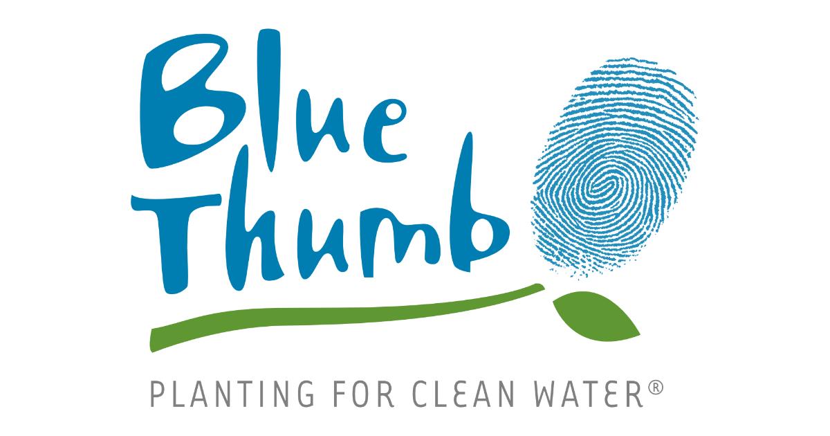 bluethumb.org