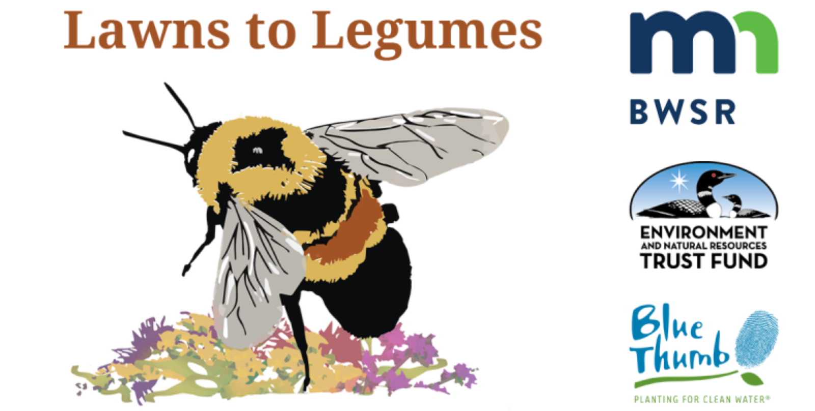 Lawns to Legumes - Your yard can bee the change
